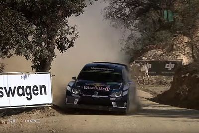 Video: Wrc Champion Sebastien Ogier Shows Mad Skills, When He Has To Dodge Some Rowdy Cows During A Rally Stage!