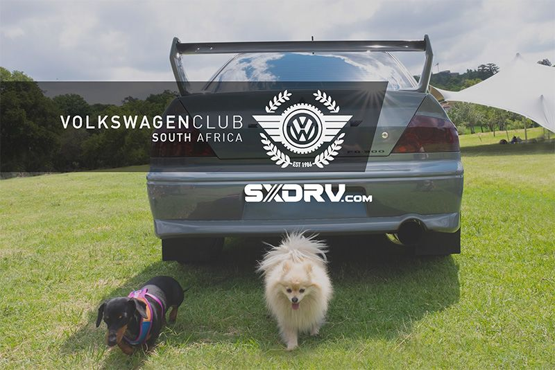 VWCSA – Puppies In The Park – 27 Jan 2019 1