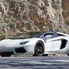 Spotted: The Lamborghini Aventador Performante 3
